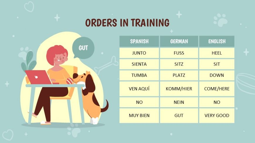 Puppy Training Powerpoint Template